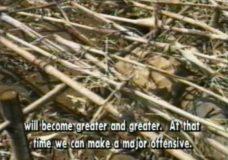 Burmese Guerrilla Training