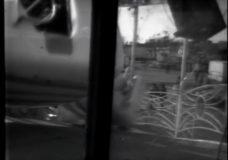 Flying Bob's Midnight Circus