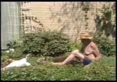 [Veeck in the garden #1]